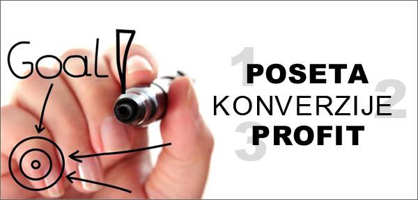 Poseta, konverzija, profit sajta